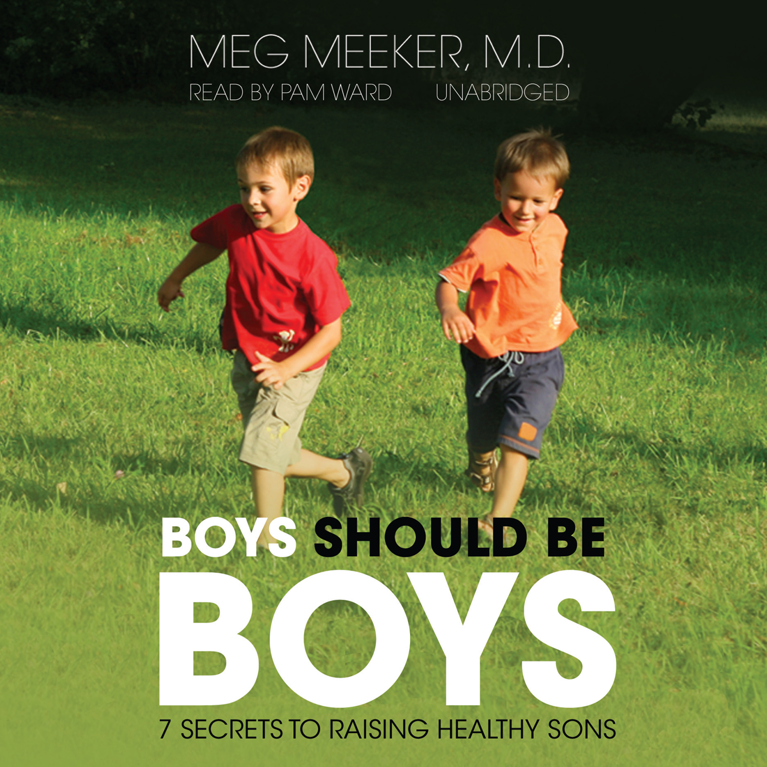 Printable Boys Should Be Boys: 7 Secrets to Raising Healthy Sons Audiobook Cover Art
