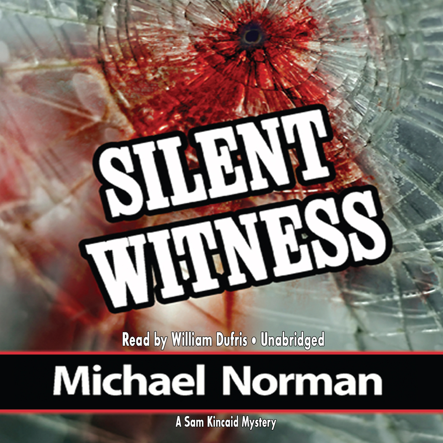 Printable Silent Witness: A Sam Kincaid Mystery Audiobook Cover Art
