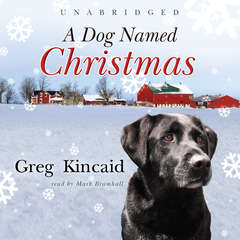 A Dog Named Christmas Audiobook, by Greg Kincaid