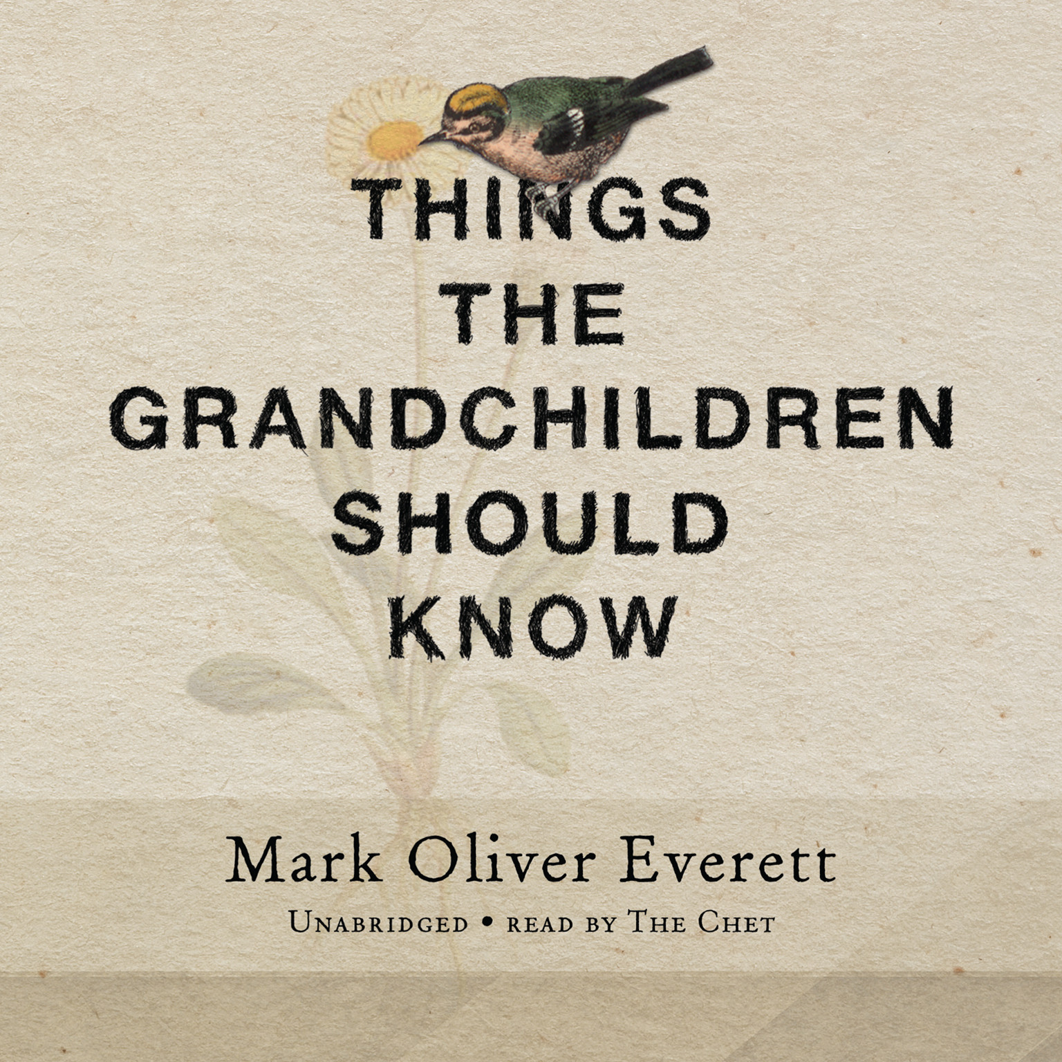 Printable Things the Grandchildren Should Know Audiobook Cover Art