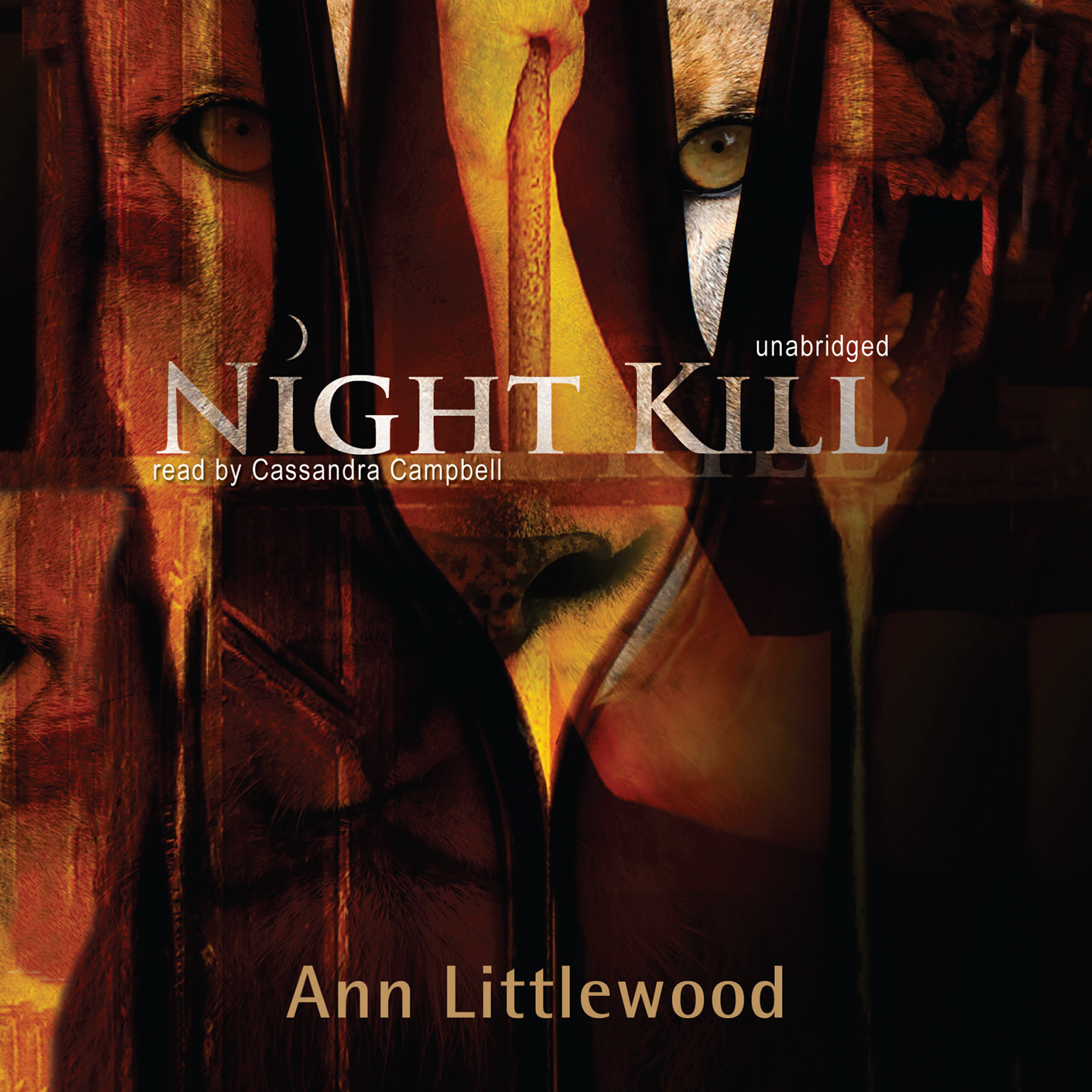 Printable Night Kill Audiobook Cover Art