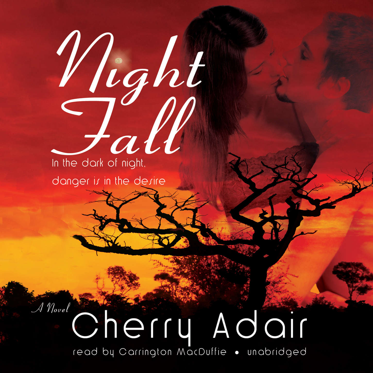 Night Fall: A Novel Audiobook, by Cherry Adair