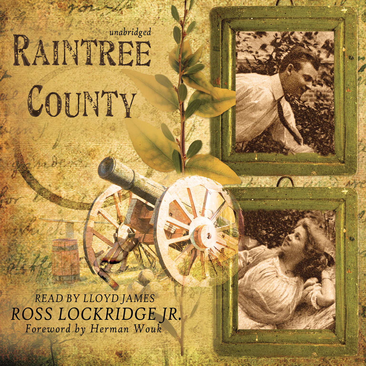 Printable Raintree County Audiobook Cover Art