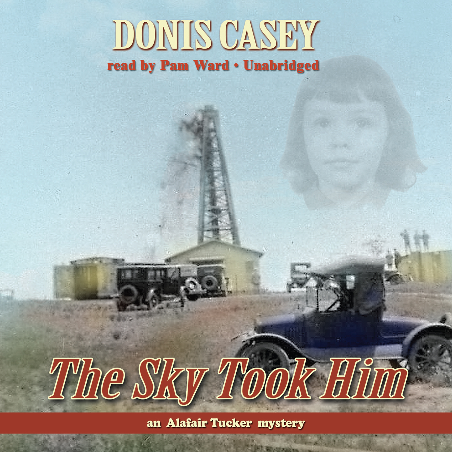 The Sky Took Him Audiobook, by Donis Casey
