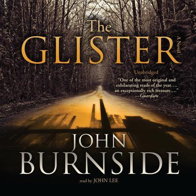 The Glister: A Novel Audiobook, by John Burnside