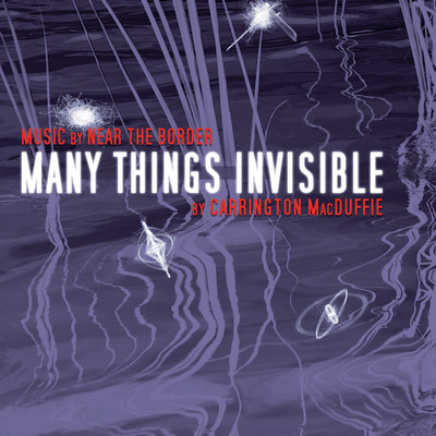 Many Things Invisible Audiobook, by Carrington MacDuffie