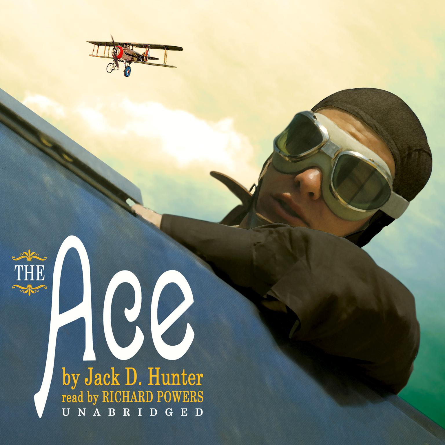 Printable The Ace: A Novel Audiobook Cover Art