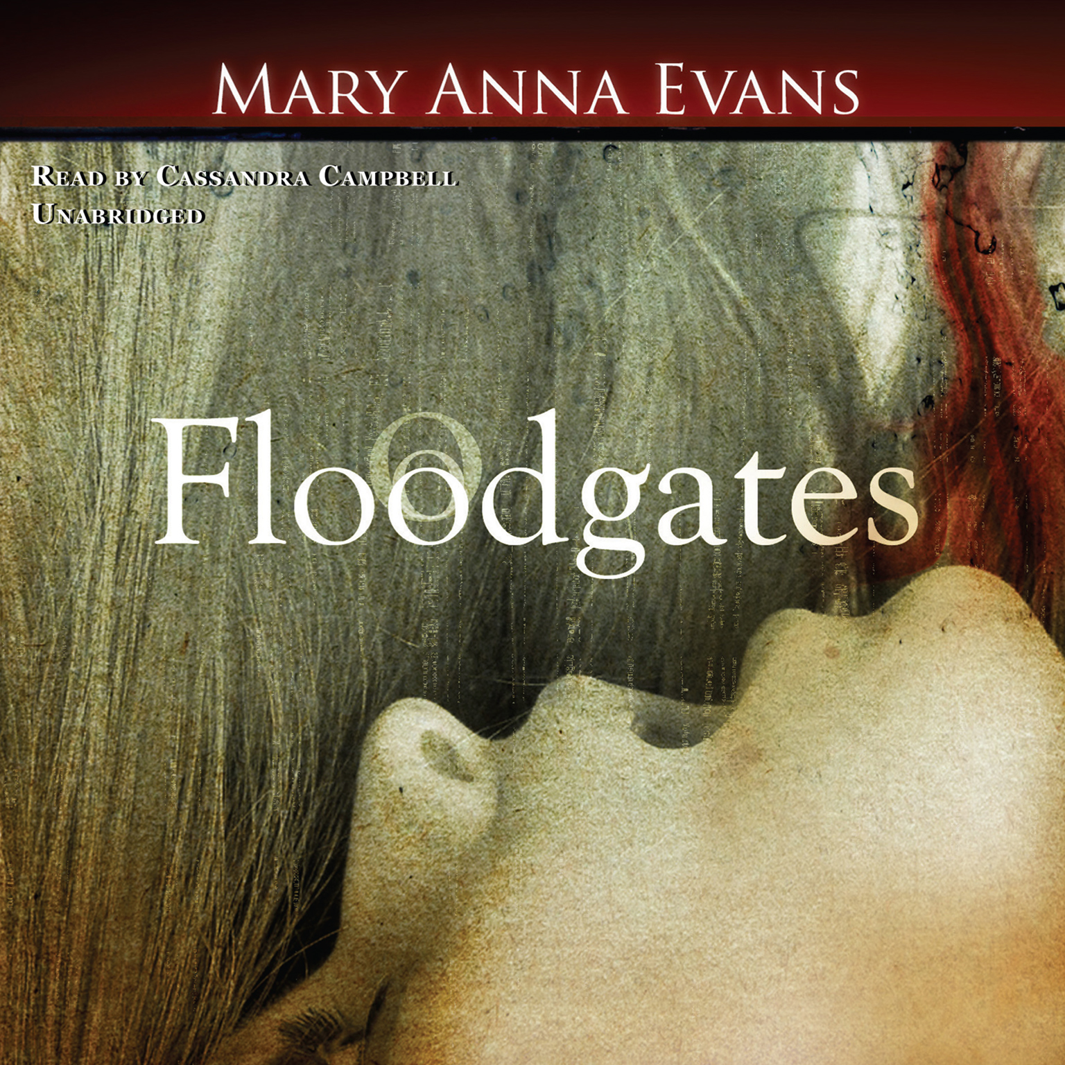 Printable Floodgates Audiobook Cover Art