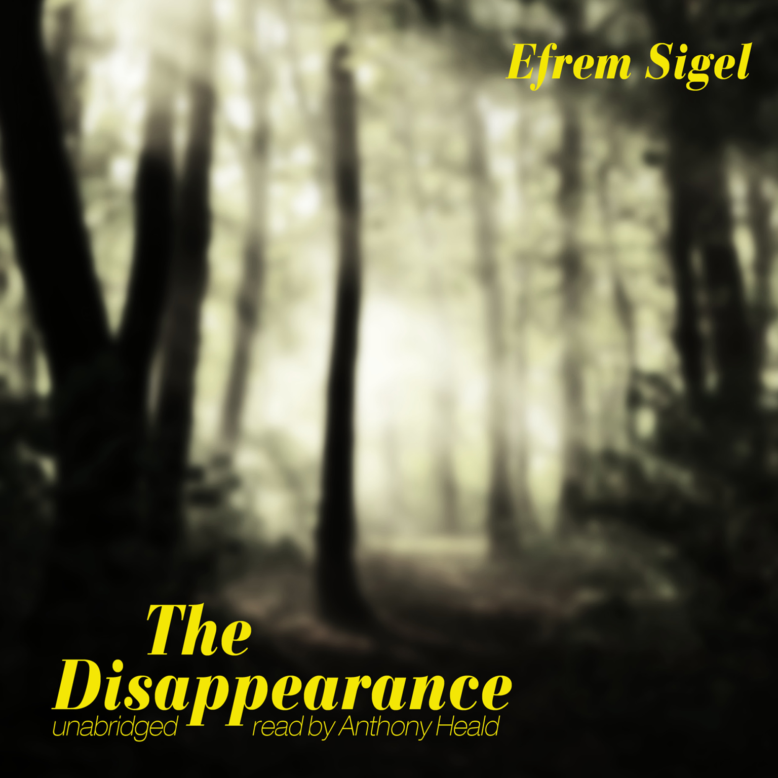 Printable The Disappearance Audiobook Cover Art