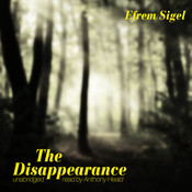 The Disappearance Audiobook, by Efrem Sigel