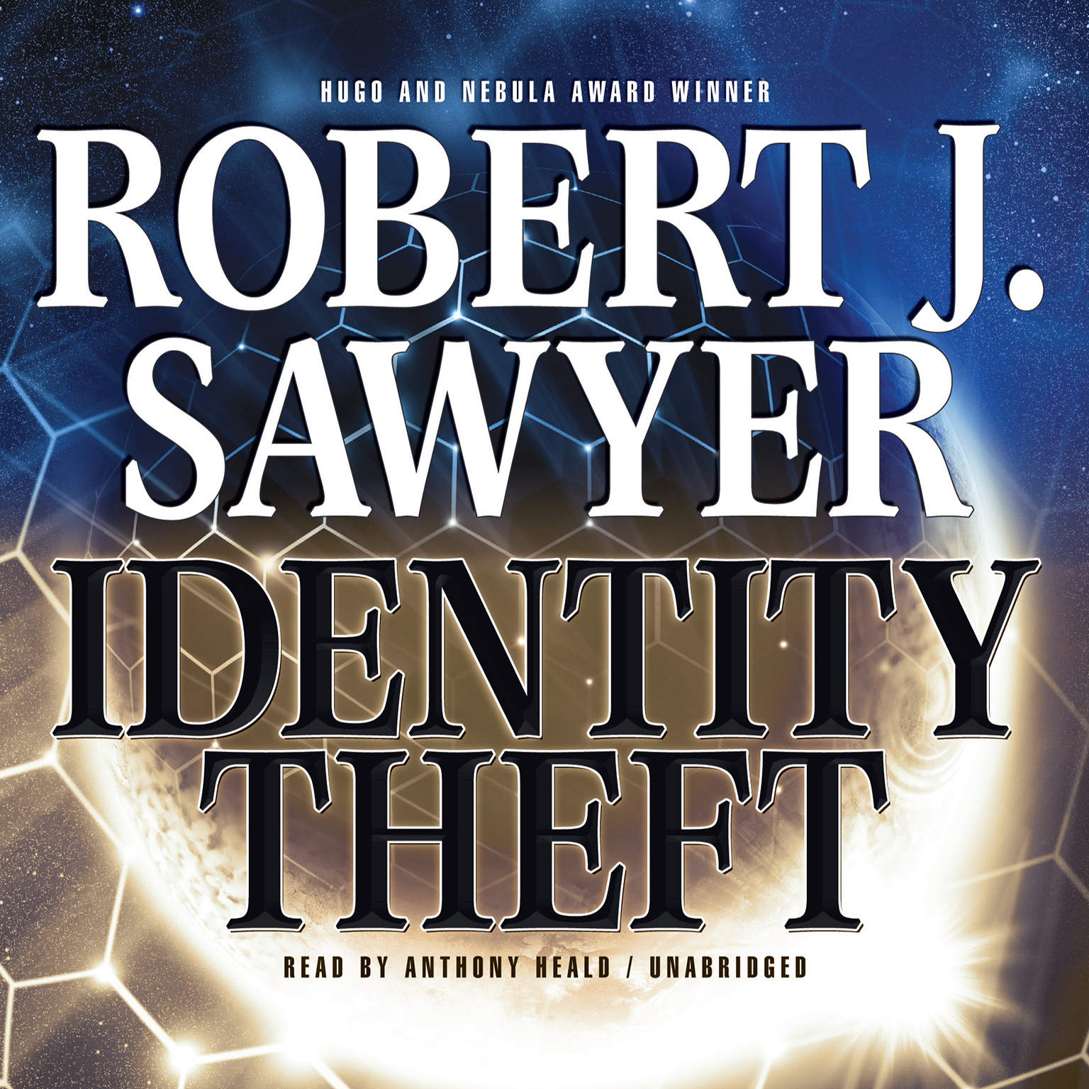 Printable Identity Theft Audiobook Cover Art