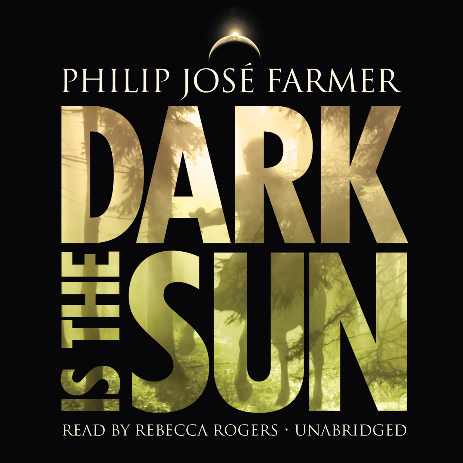 Printable Dark Is the Sun Audiobook Cover Art
