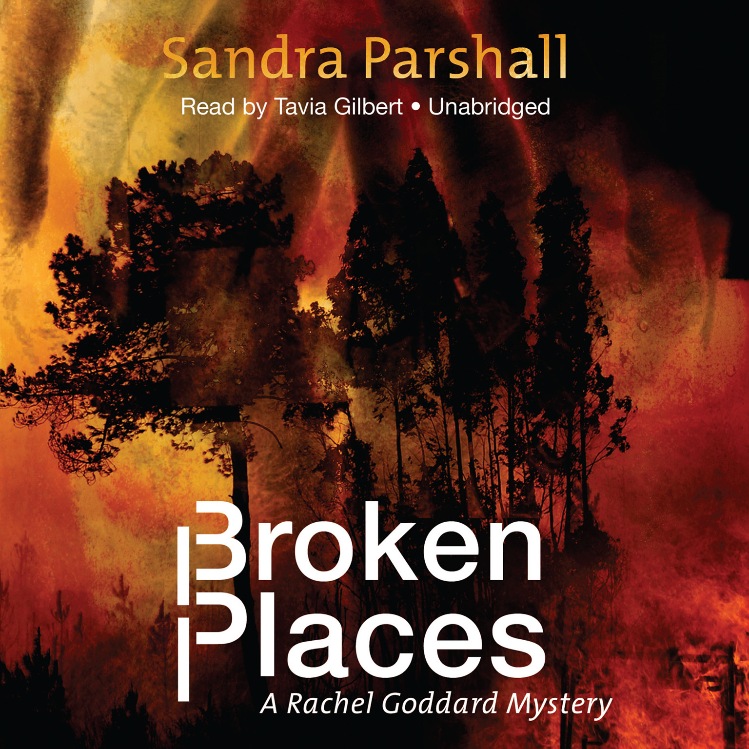Printable Broken Places: A Rachel Goddard Mystery Audiobook Cover Art