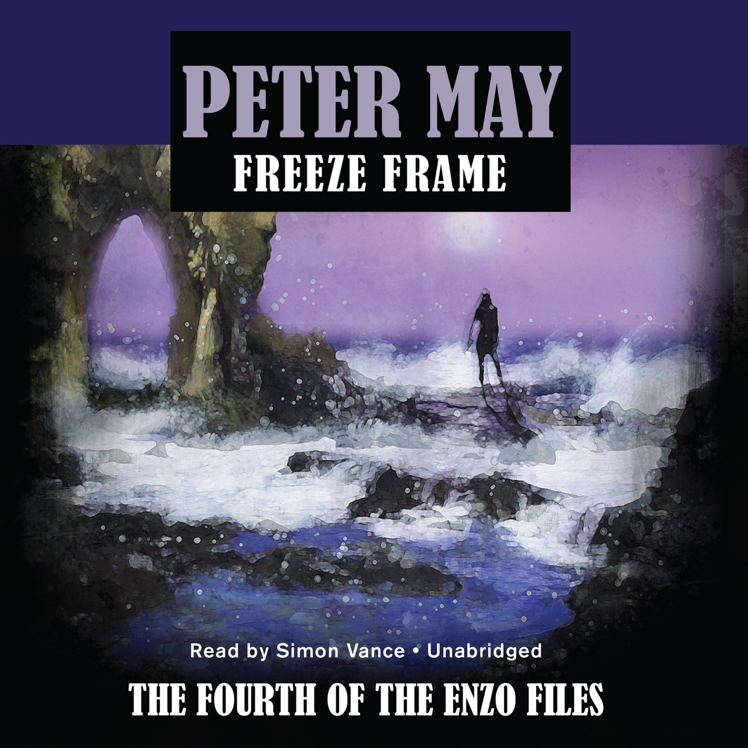 Printable Freeze Frame Audiobook Cover Art
