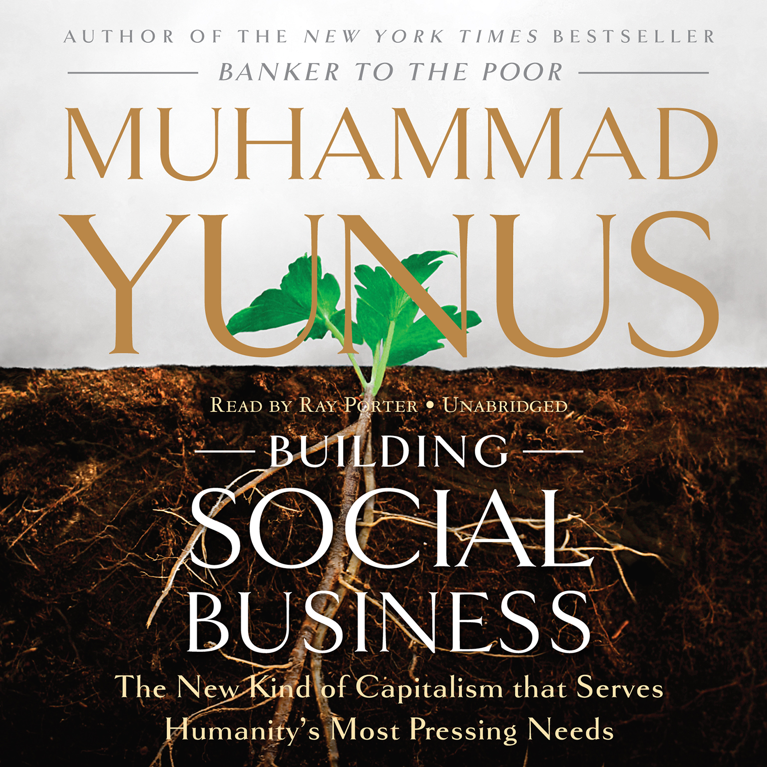 Printable Building Social Business: The New Kind of Capitalism That Serves Humanity's Most Pressing Needs Audiobook Cover Art