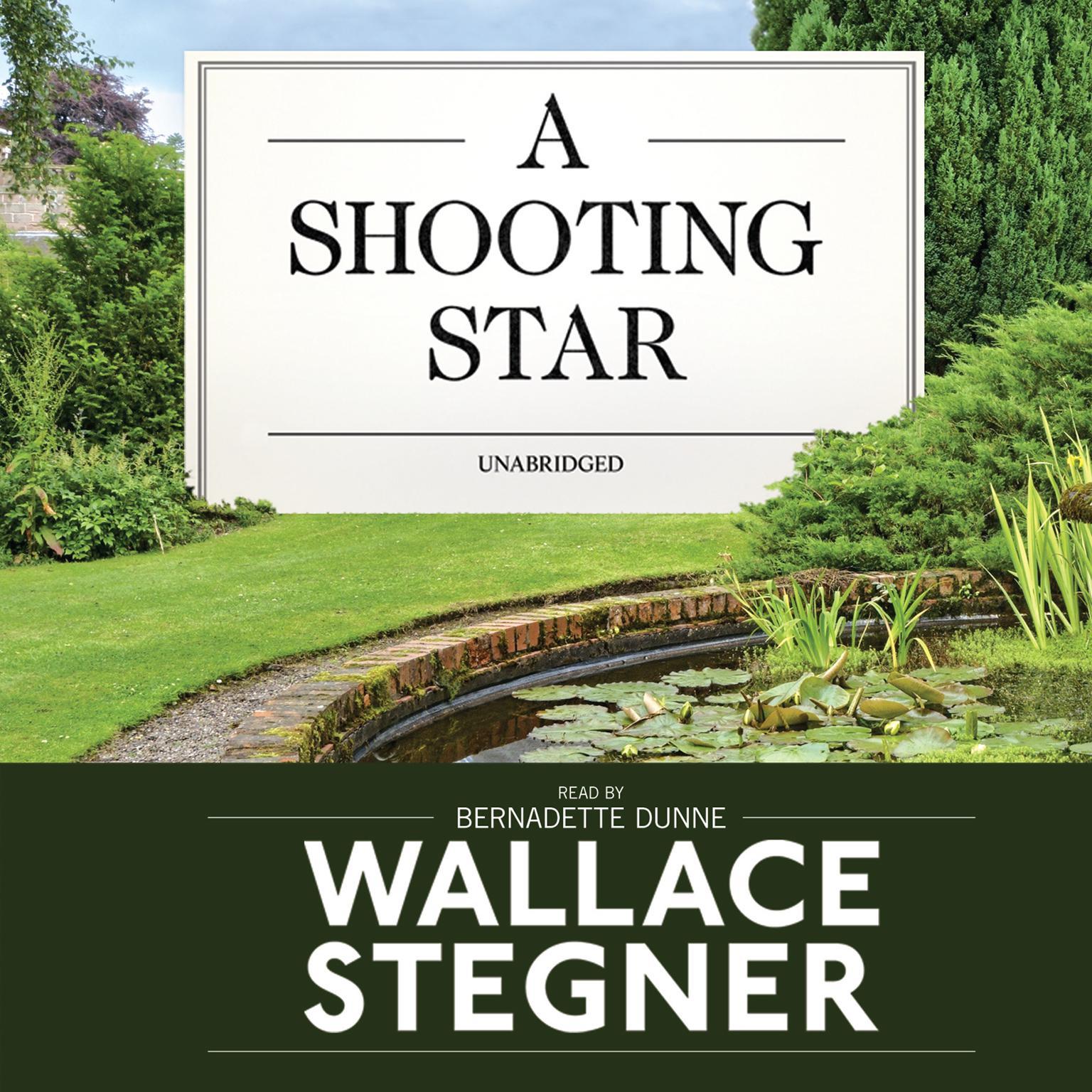 Printable A Shooting Star Audiobook Cover Art