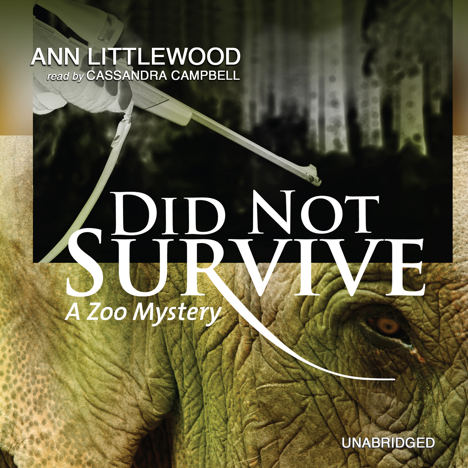 Printable Did Not Survive Audiobook Cover Art
