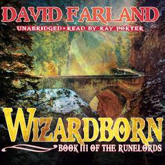 Wizardborn Audiobook, by David Farland