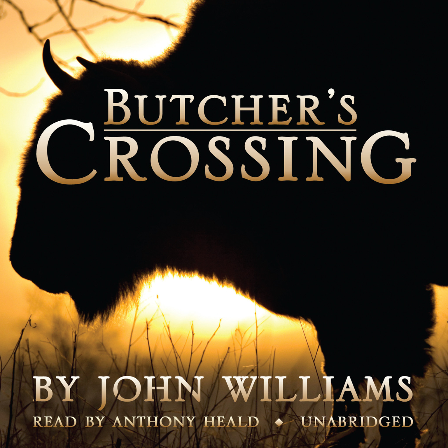 Printable Butcher's Crossing Audiobook Cover Art
