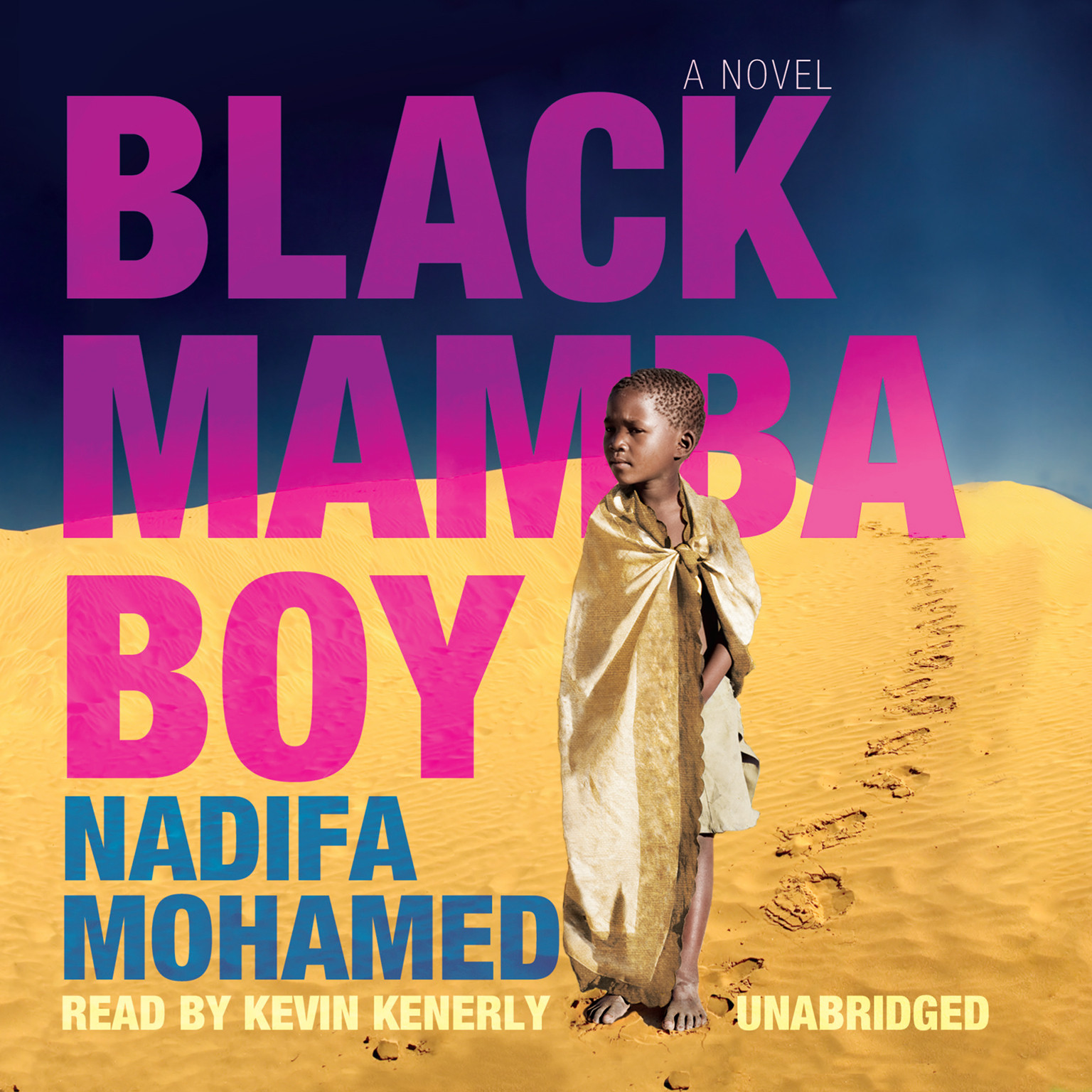 Printable Black Mamba Boy Audiobook Cover Art