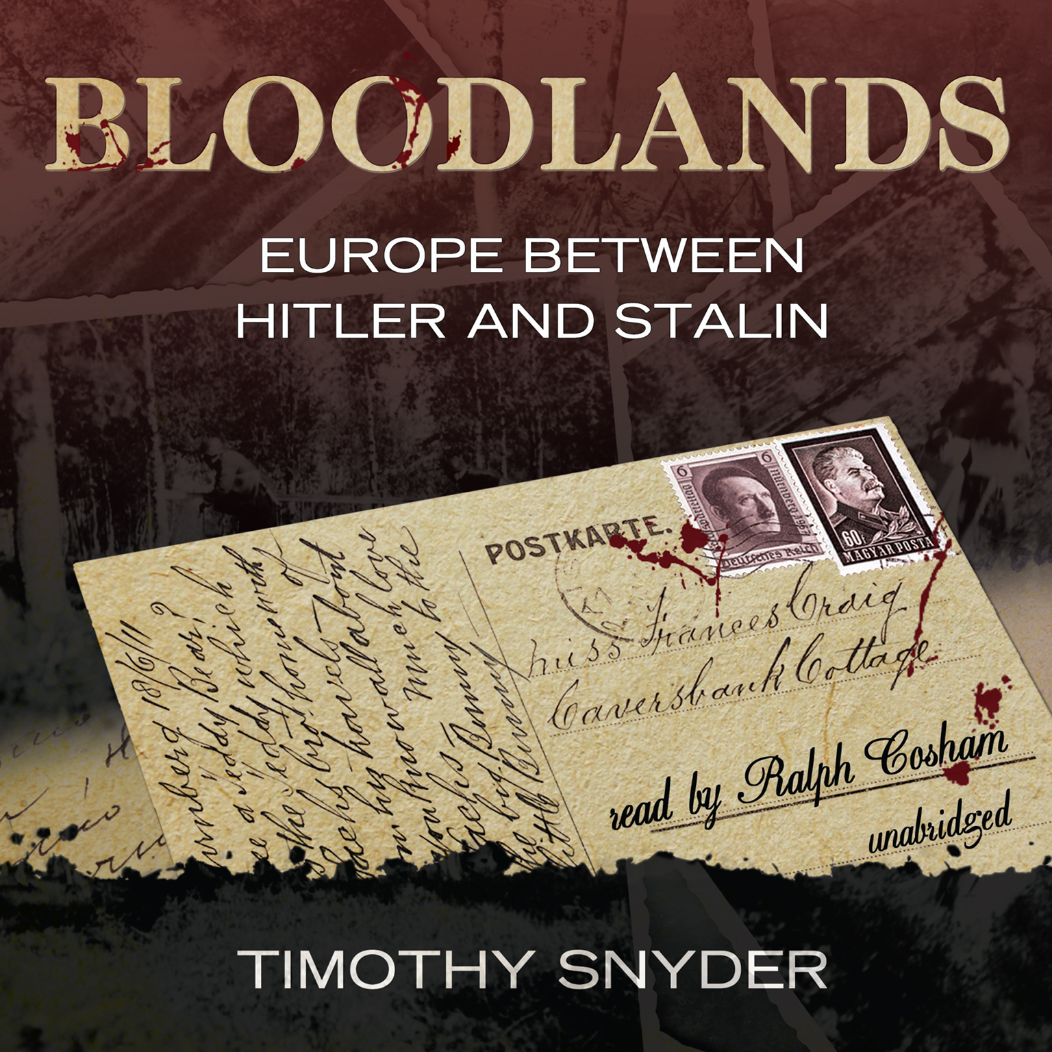 Printable Bloodlands: Europe Between Hitler and Stalin Audiobook Cover Art