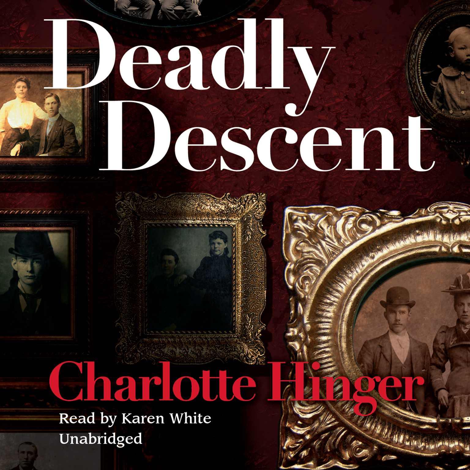 Printable Deadly Descent Audiobook Cover Art