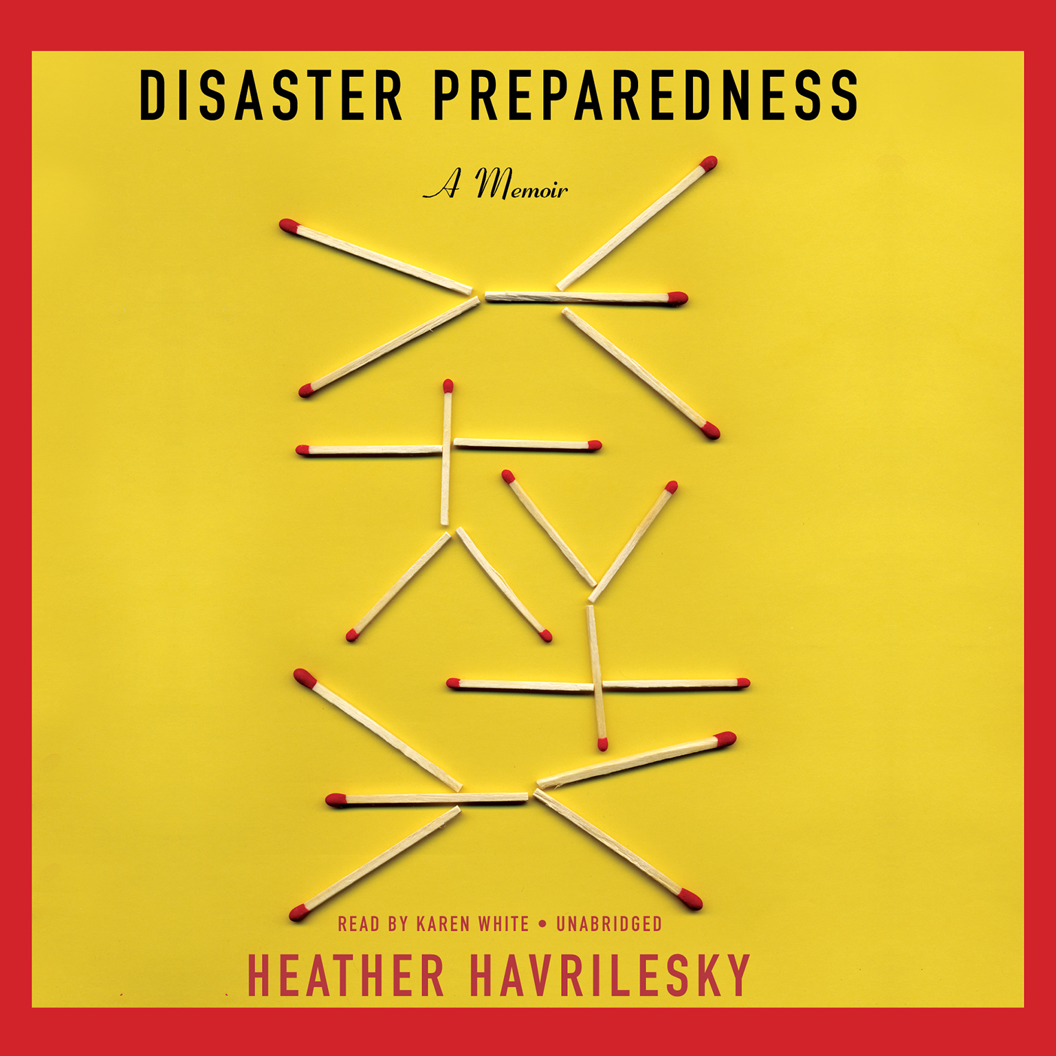 Printable Disaster Preparedness: A Memoir Audiobook Cover Art