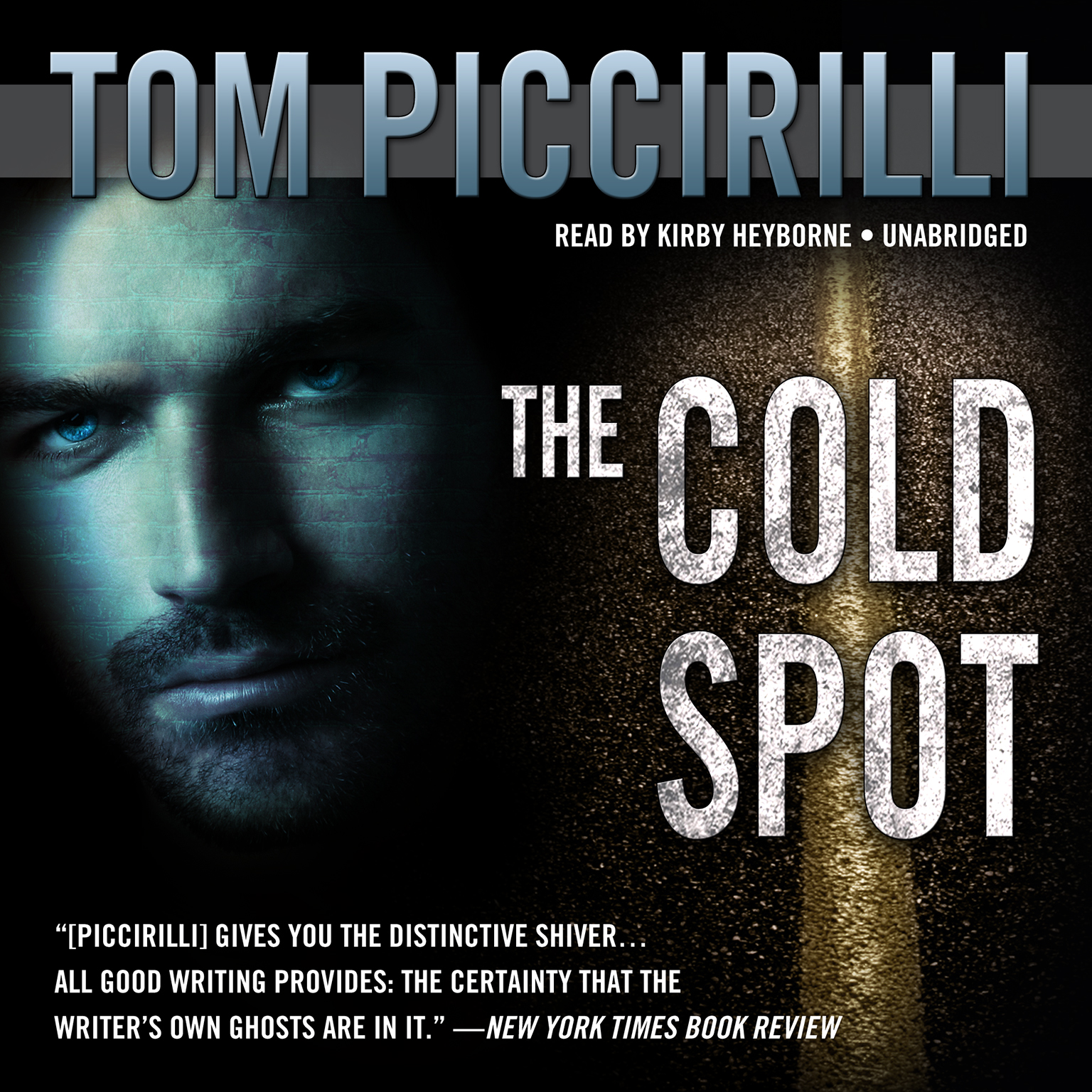 Printable The Cold Spot Audiobook Cover Art