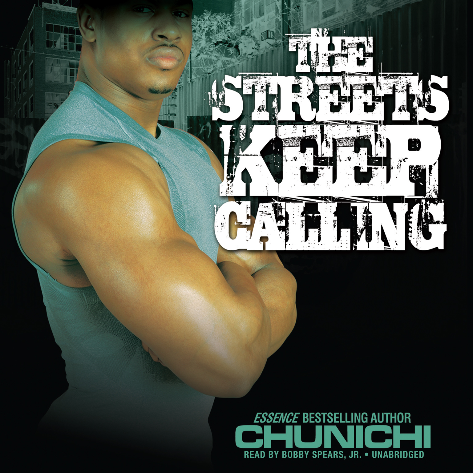 Printable The Streets Keep Calling Audiobook Cover Art