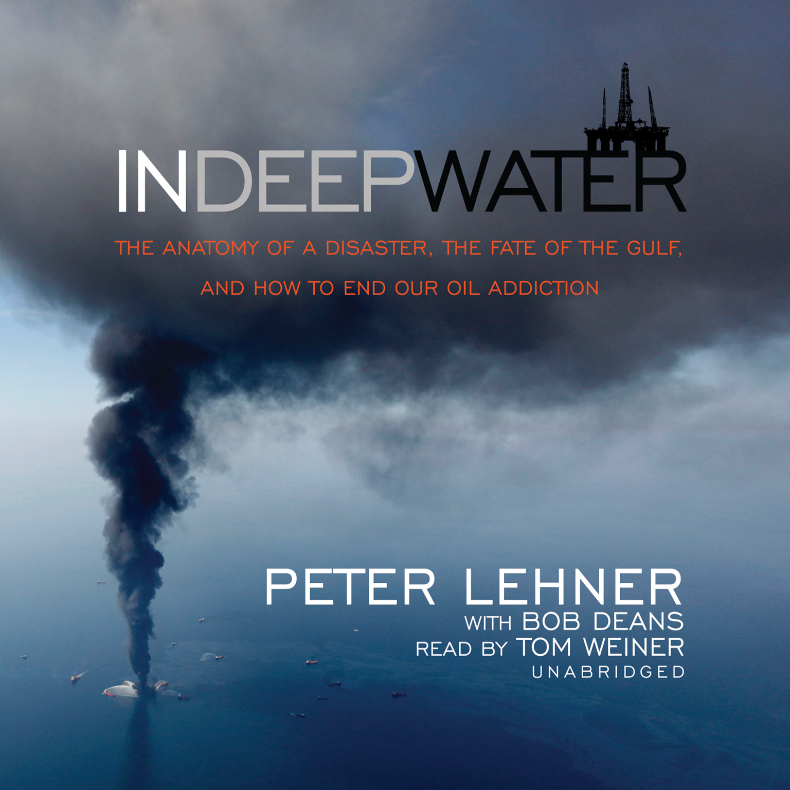 Printable In Deep Water: The Anatomy of a Disaster, the Fate of the Gulf, and How to End Our Oil Addiction Audiobook Cover Art