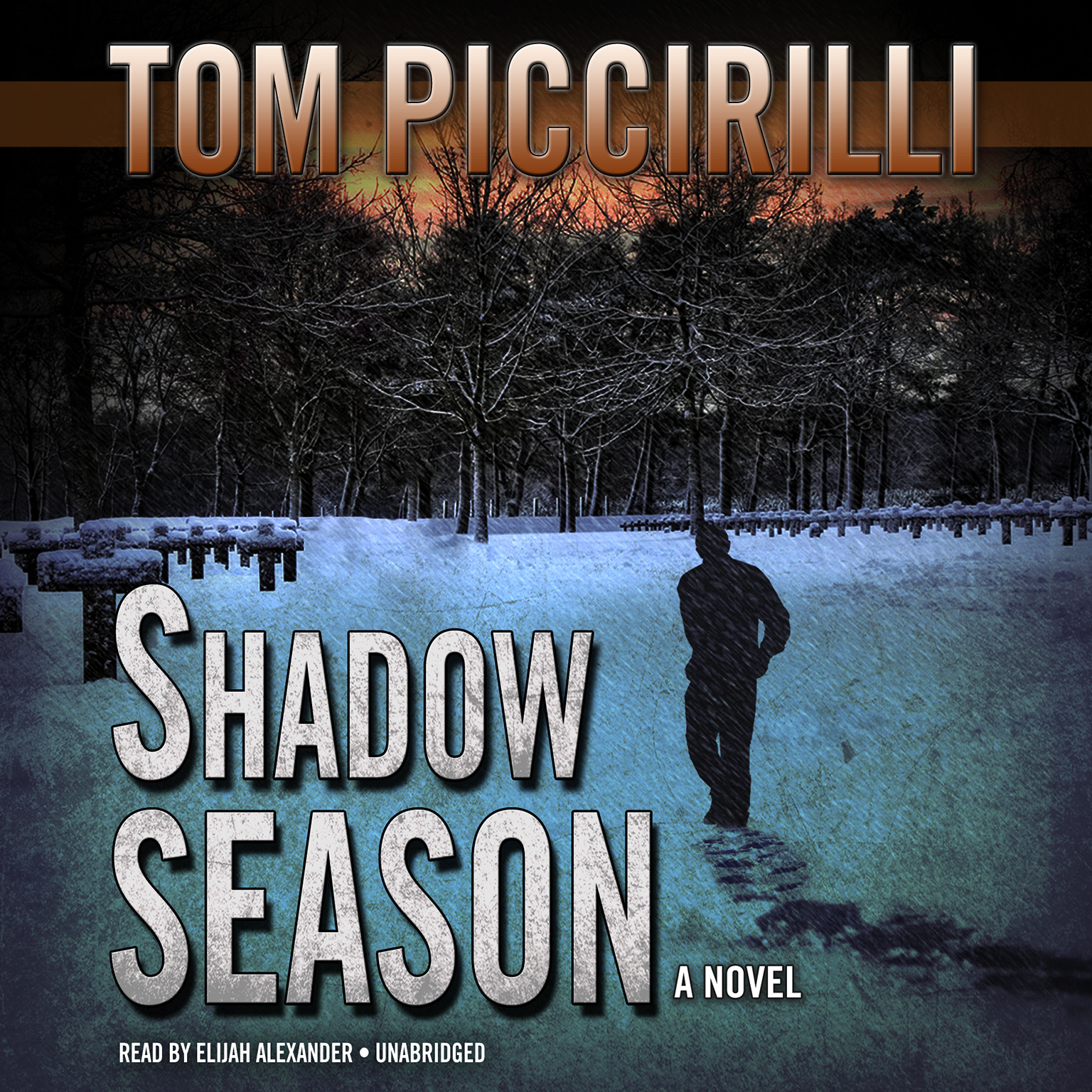 Printable Shadow Season: A Novel Audiobook Cover Art