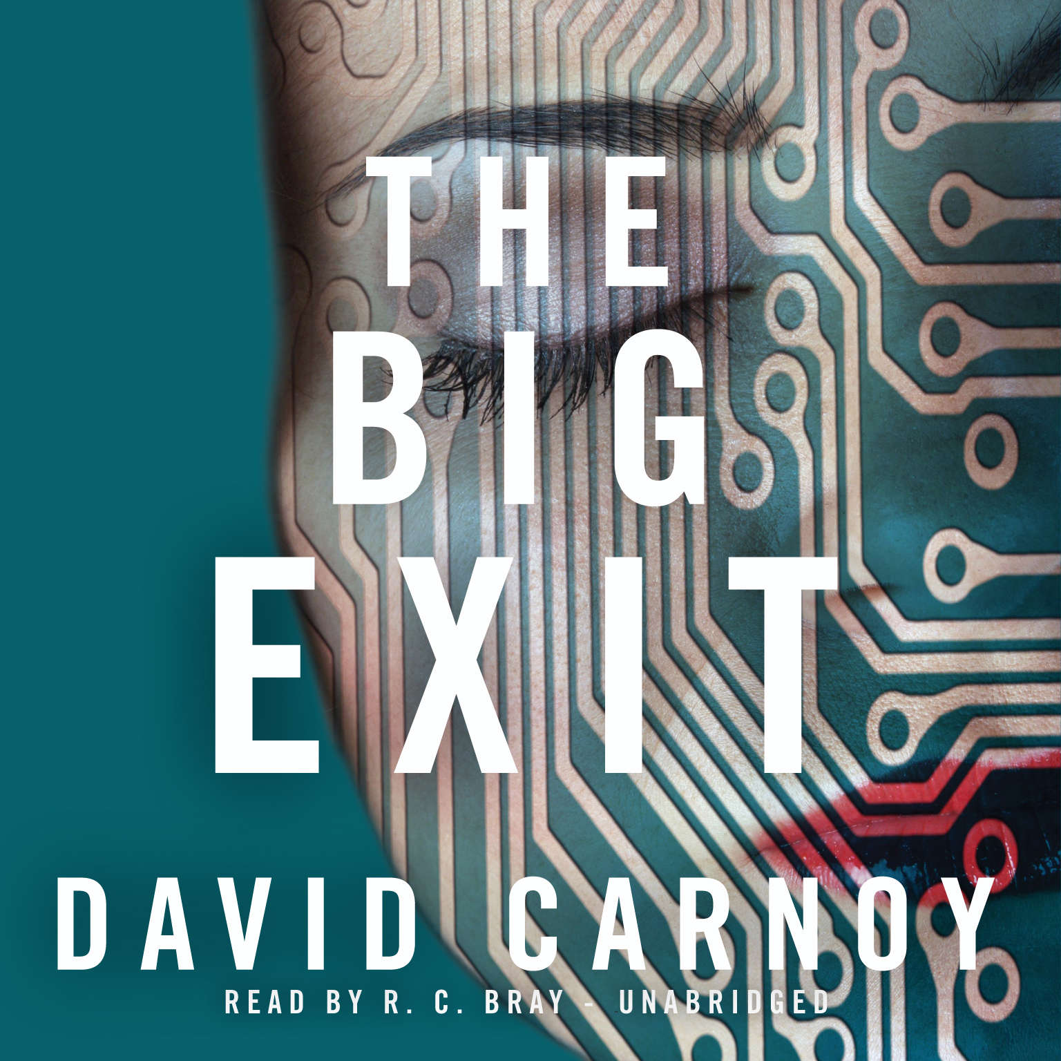 Printable The Big Exit Audiobook Cover Art