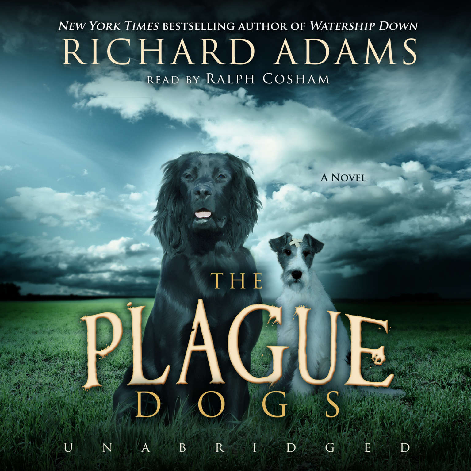 Printable The Plague Dogs: A Novel Audiobook Cover Art