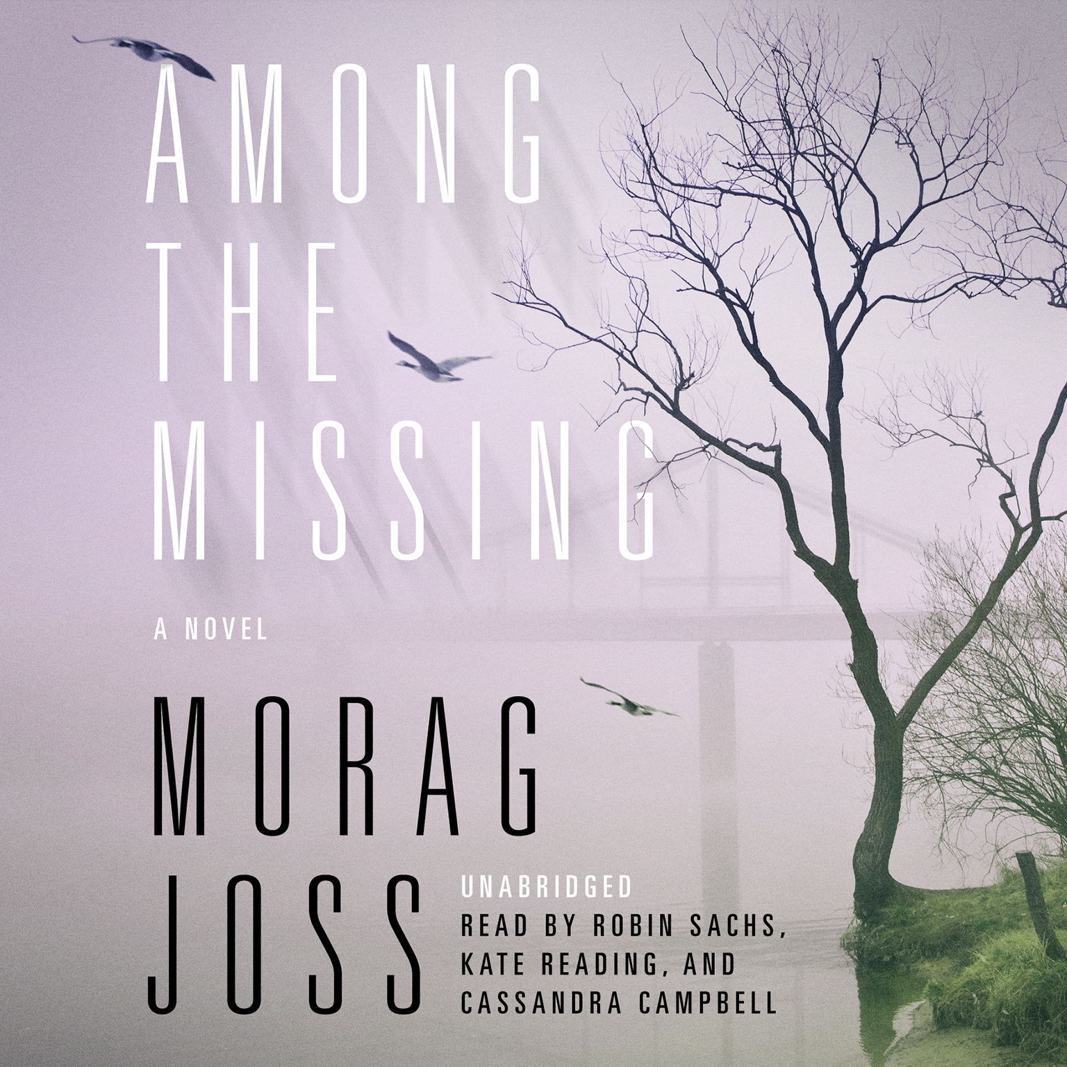 Printable Among the Missing: A Novel Audiobook Cover Art