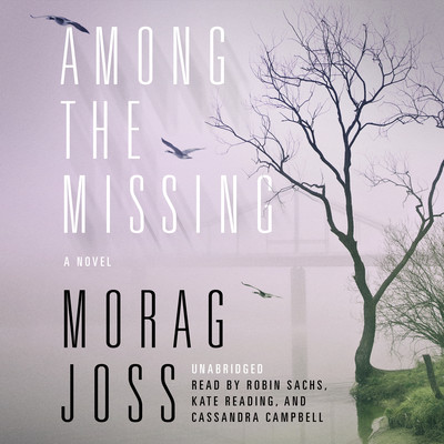Among the Missing: A Novel Audiobook, by Morag Joss