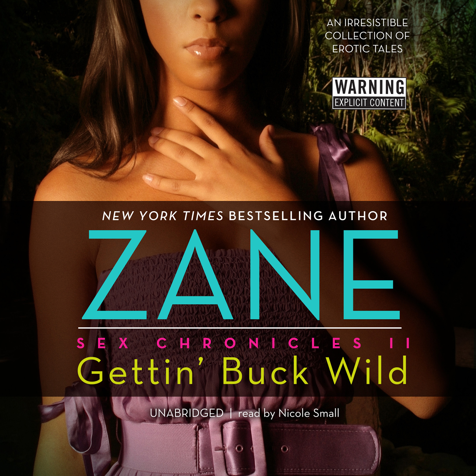 Printable Gettin' Buck Wild: Sex Chronicles II Audiobook Cover Art