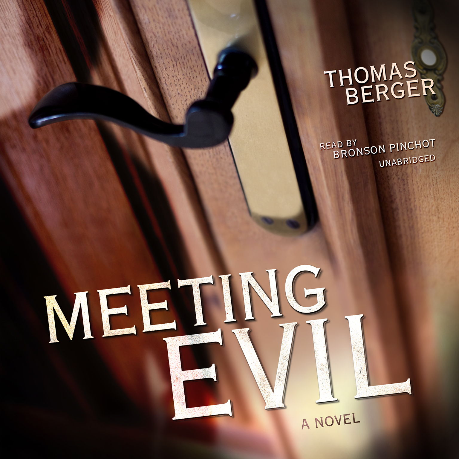Printable Meeting Evil: A Novel Audiobook Cover Art