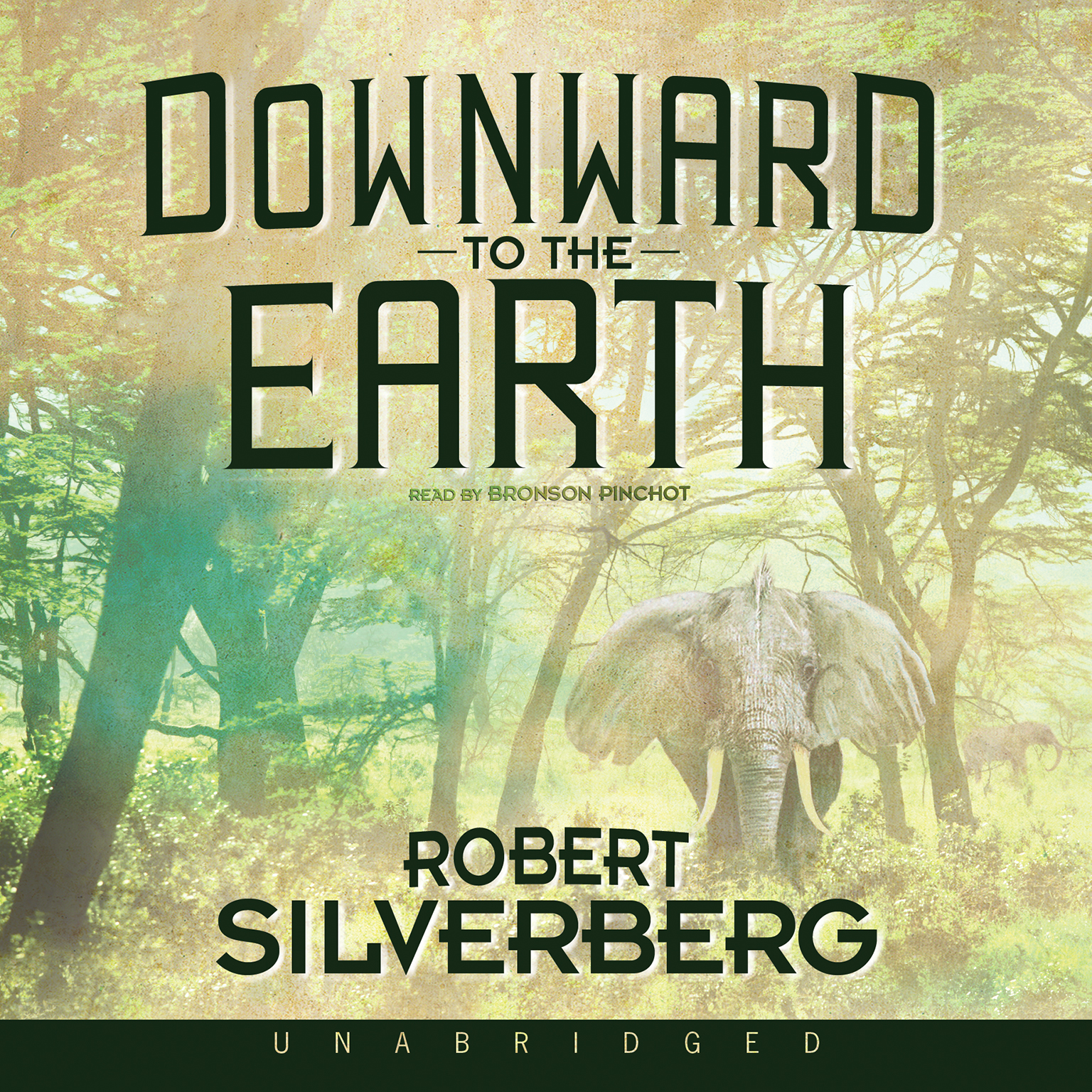 Printable Downward to the Earth Audiobook Cover Art