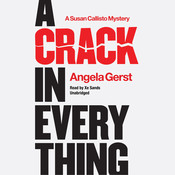 A Crack in Everything: A Susan Callisto Mystery Audiobook, by Angela Gerst