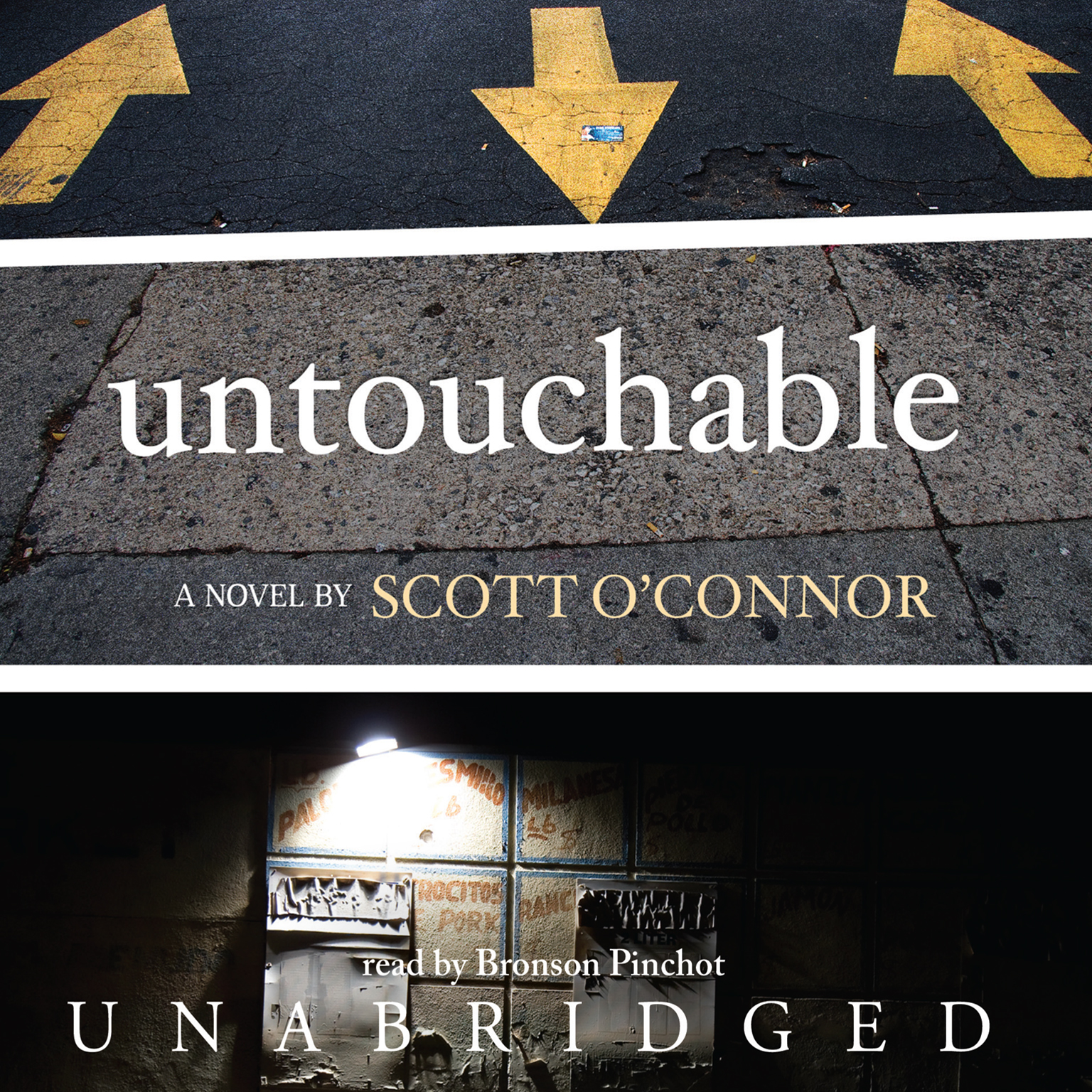 Printable Untouchable: A Novel Audiobook Cover Art