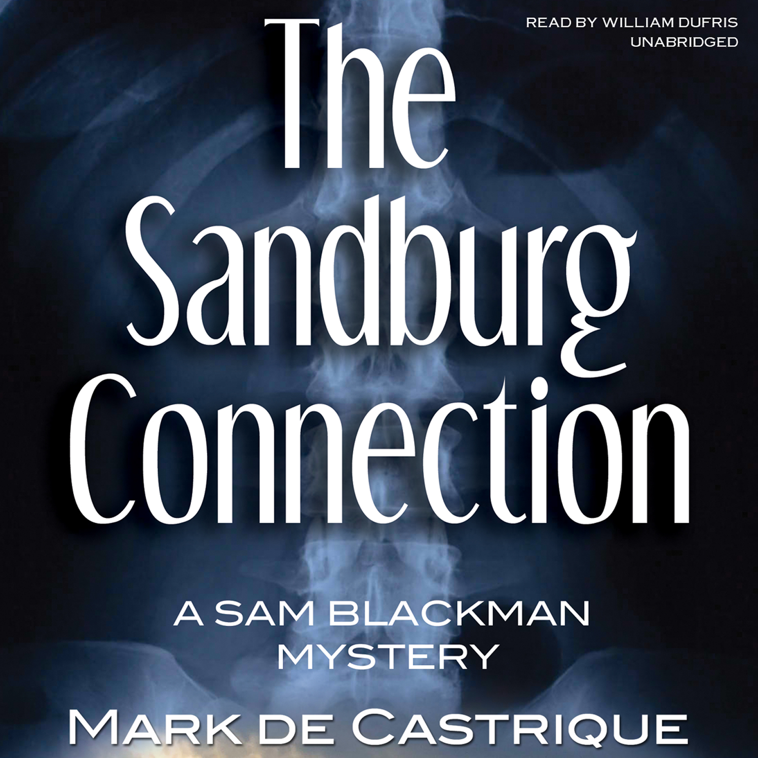 Printable The Sandburg Connection: A Sam Blackman Mystery Audiobook Cover Art