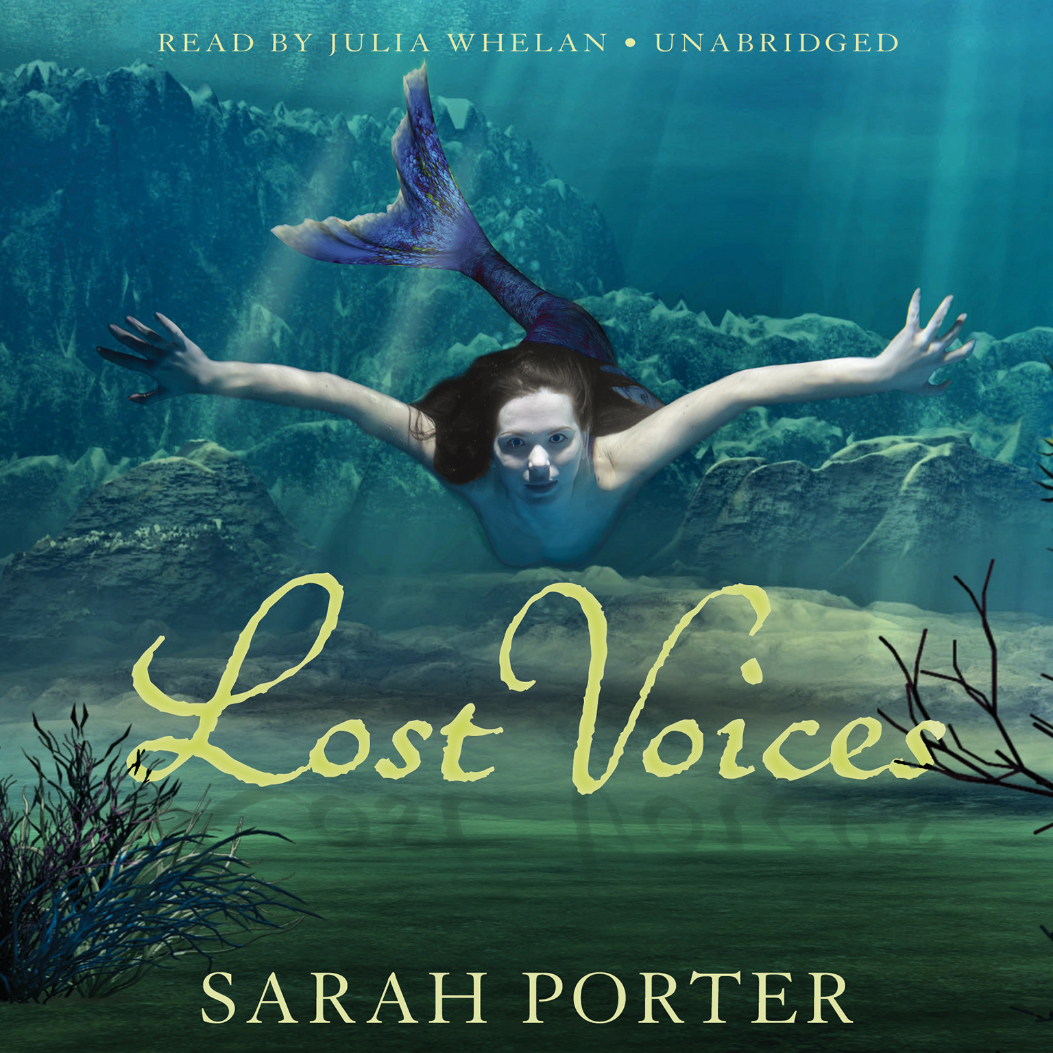 Printable Lost Voices Audiobook Cover Art