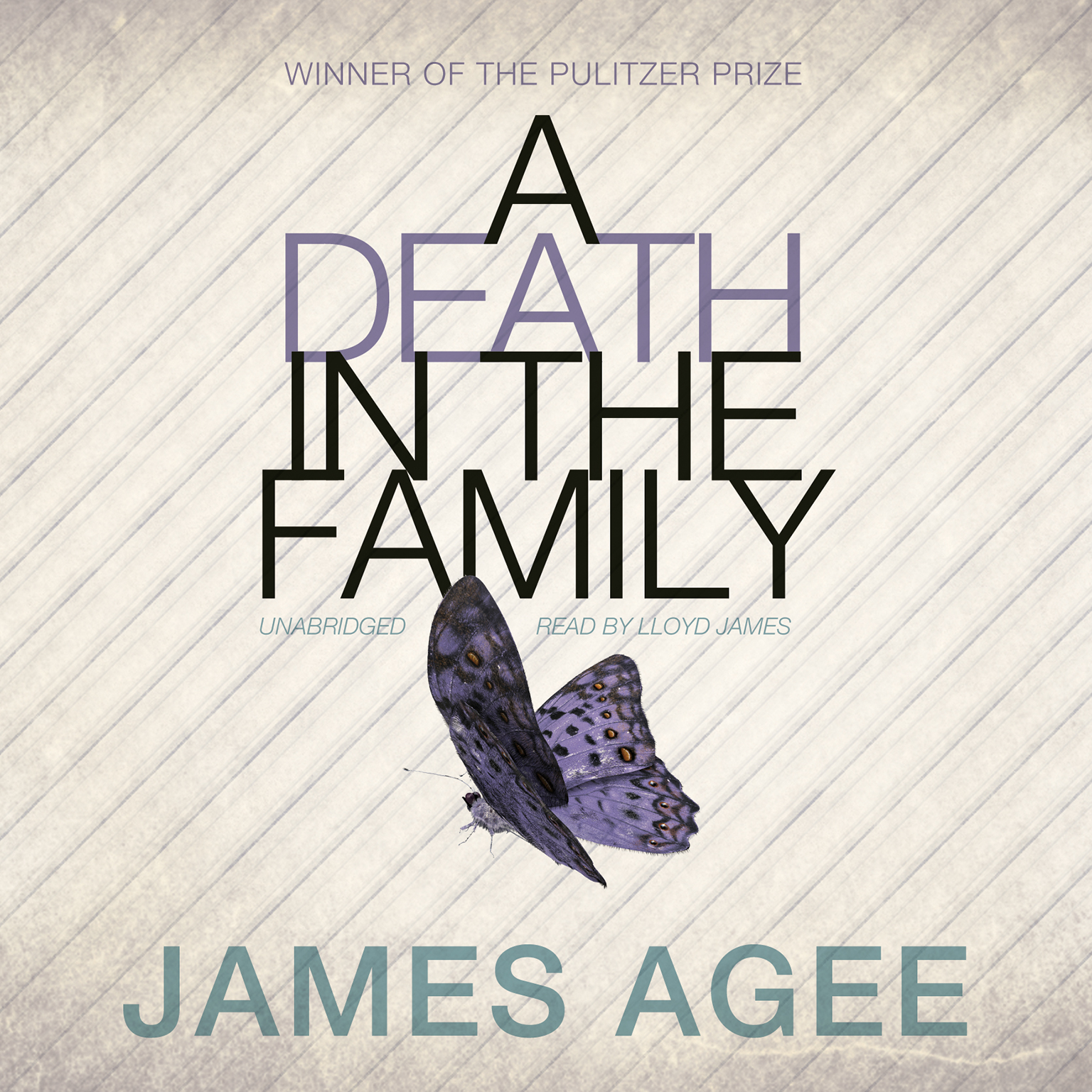 Printable A Death in the Family Audiobook Cover Art