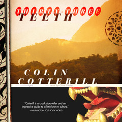 Thirty-Three Teeth Audiobook, by Colin Cotterill