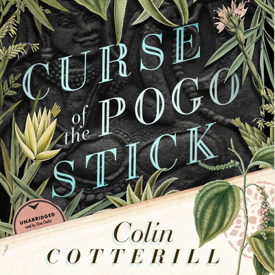 Curse of the Pogo Stick Audiobook, by