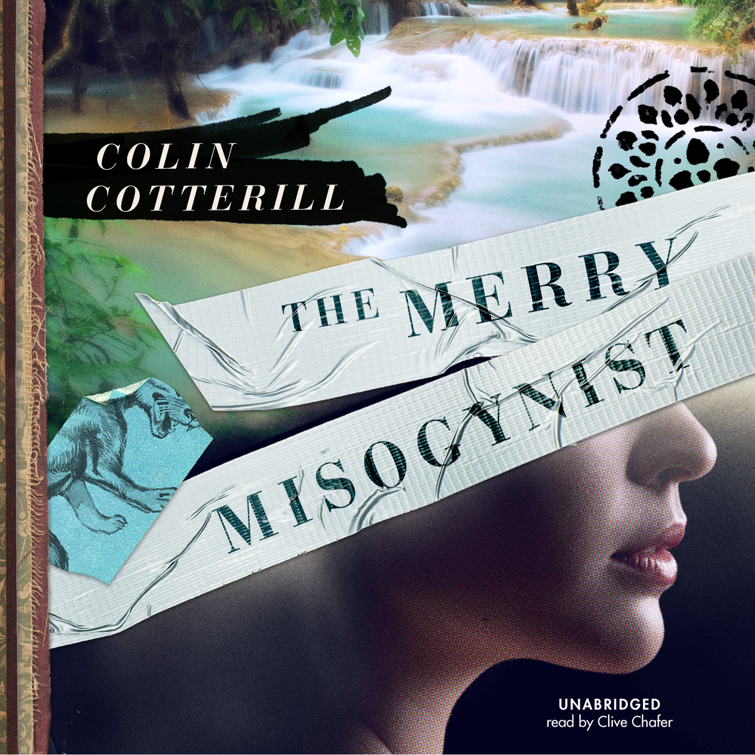 Printable The Merry Misogynist Audiobook Cover Art