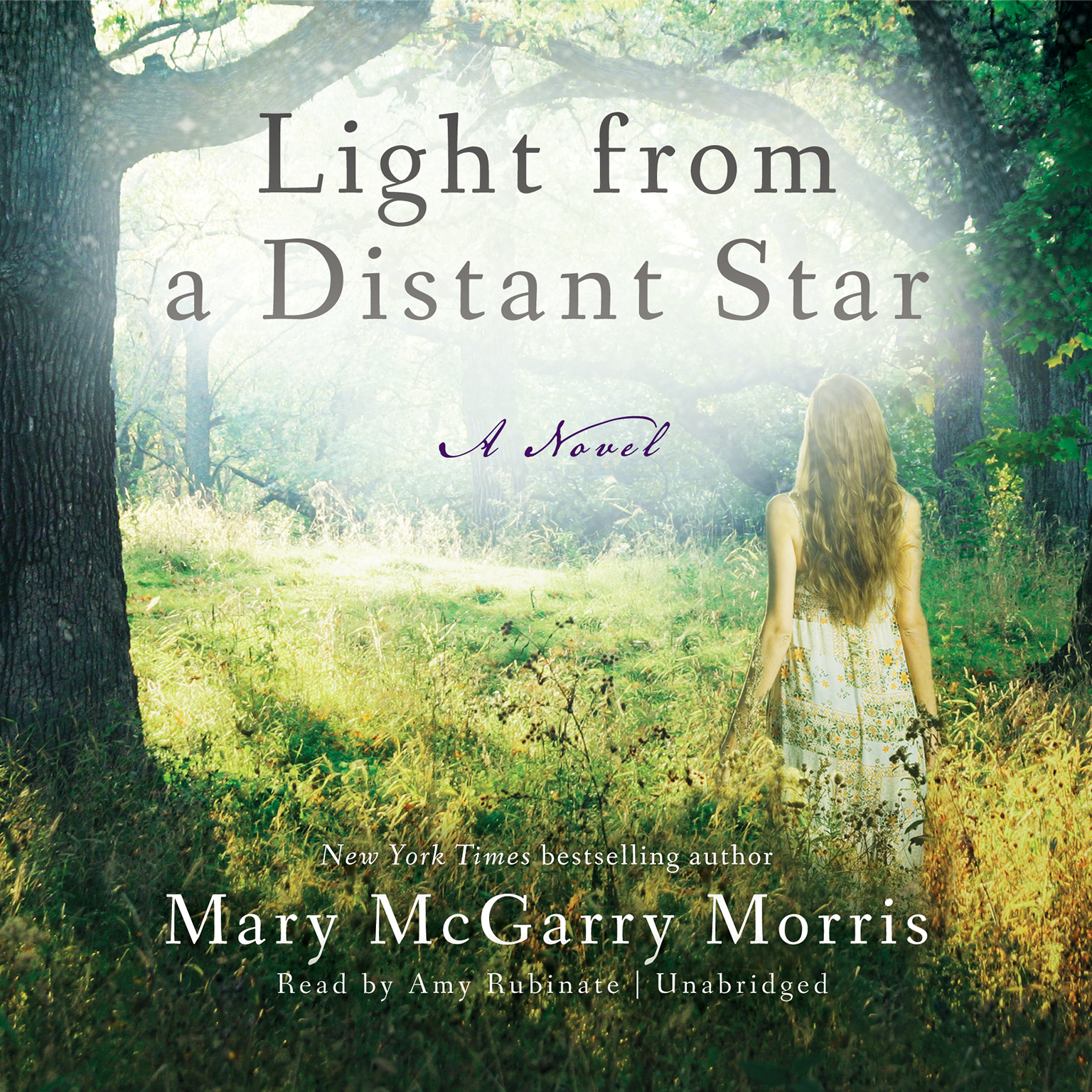 Printable Light from a Distant Star: A Novel Audiobook Cover Art