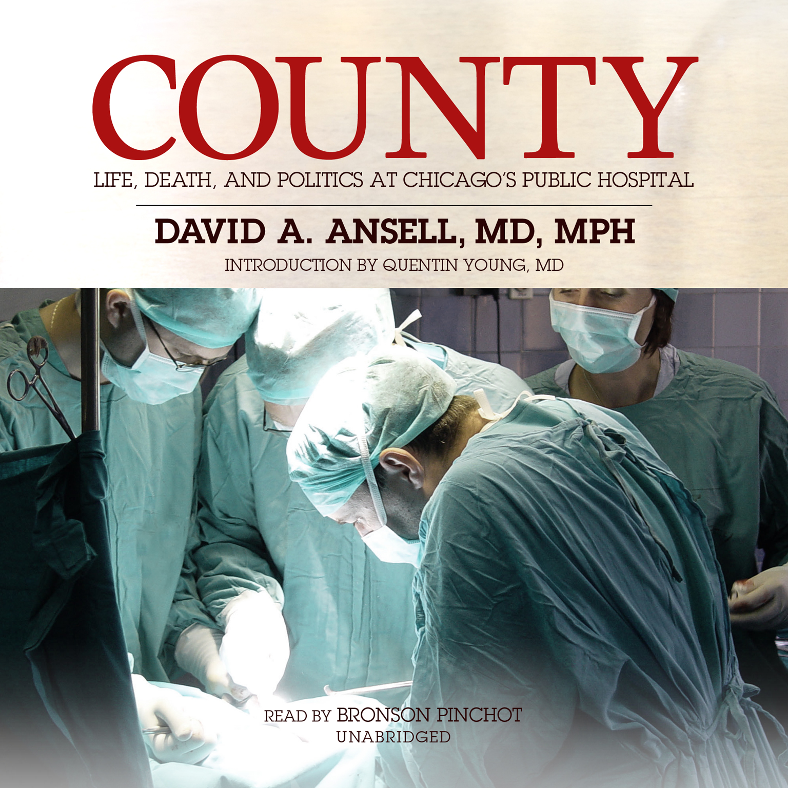 Printable County: Life, Death, and Politics at Chicago's Public Hospital Audiobook Cover Art