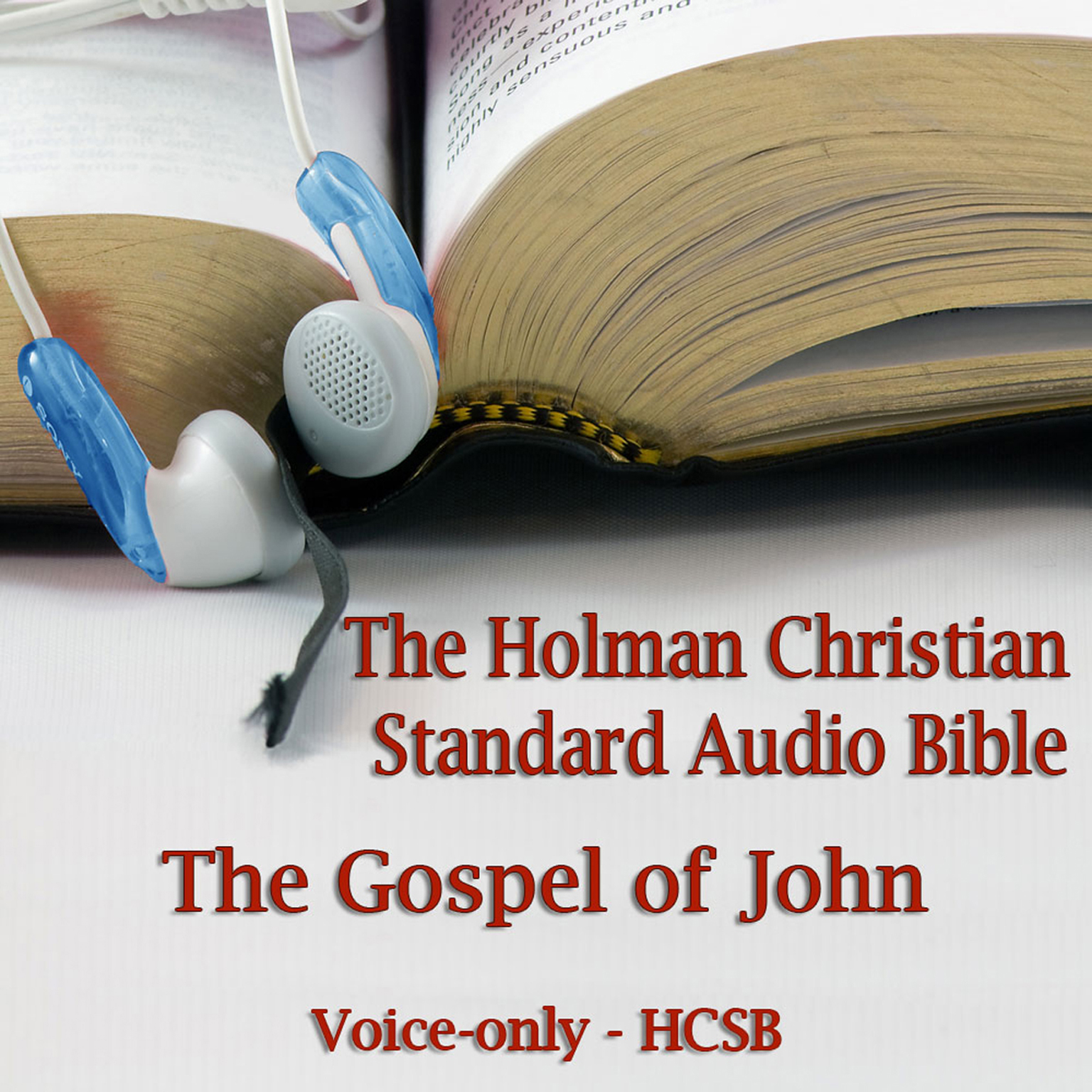 Printable The Gospel of John: The Voice Only Holman Christian Standard Audio Bible (HCSB) Audiobook Cover Art