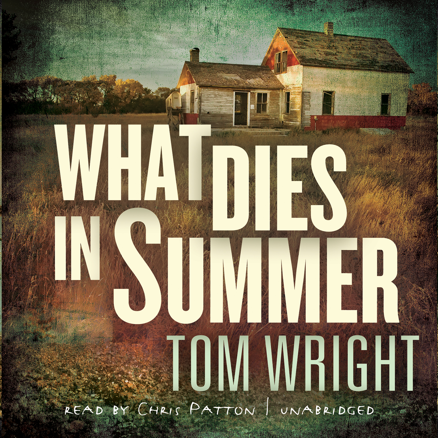 Printable What Dies in Summer: A Novel Audiobook Cover Art